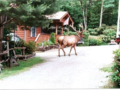 Photo for Large home, sleeps 12! Creek! Spa! Family Oriented! Separate Cabin Available!
