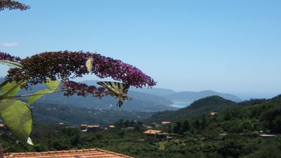 Photo for Oasis of relaxation between hill and sea! Ruby Suite between Portofino and Cinque Terre.
