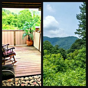 Photo for Peaceful Private MOUNTAINSIDE Cottage, delightfully unique, near ASHEVILLE fun!