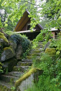 Photo for Cozy Skykomish River Cascade Mountains Cabin, Relaxation, View Hot Tub, Hiking