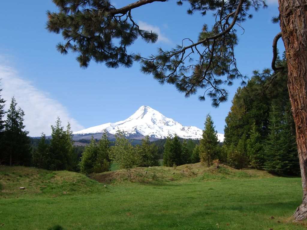 mount hood parkdale mature women dating site 2017-1-4  twin peaks (sequoia national park) the role of women and african-americans in war industries clackamas river ( estacada ), hood river ( mount hood-parkdale.