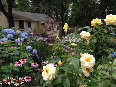 Photo for Charming Cape Cod Cottage- Good availability for fall!