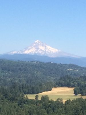 Photo for The Hideaway in Sandy, OR