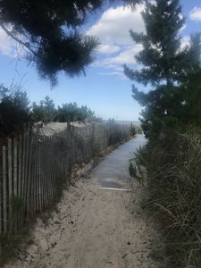 Photo for 3BR Cottage Vacation Rental in Dewey Beach, Delaware