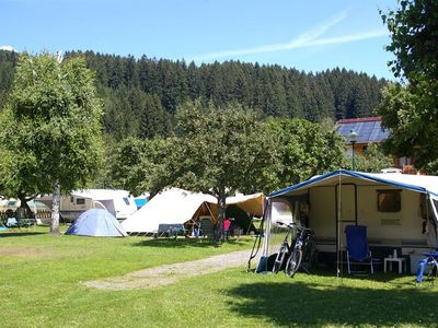 """Photo for Pitch Standard """"Orchard"""" - Alpencamp Kötschach-Mauthen"""