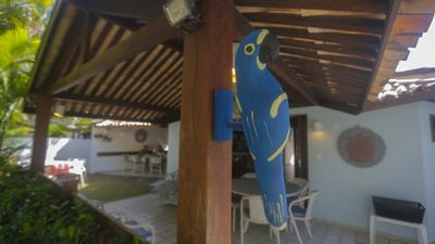 Photo for Praia do Forte, on the beach. Blue Macaw House - 5 suites with air and pool.