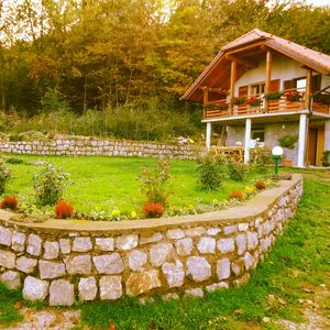Holiday apartment in the vineyards and forests