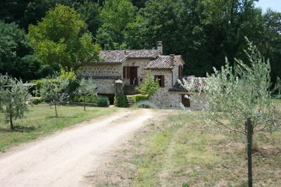 House and olive grove