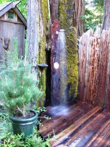 Enjoy a private hot or cold outdoor shower among the towering redwoods ... aahhh