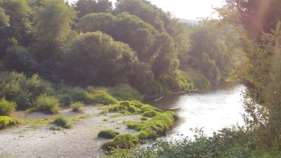 Photo for 1BR Campground Vacation Rental in Siletz, Oregon