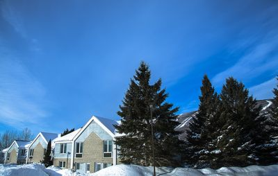 Photo for Mont Sainte Anne,le Massif 4 bedroom villa Quebec city