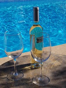 A gass of wine by the pool lovely!