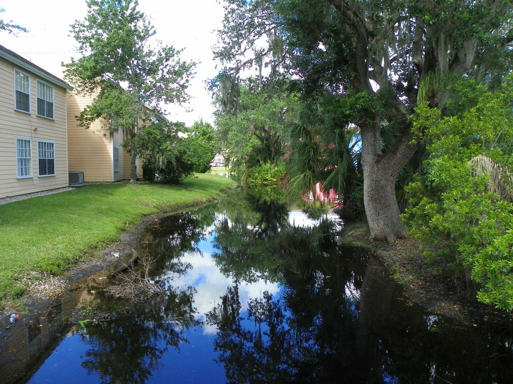 The Perfect Vacation Getaway In The Heart Of Kissimmee