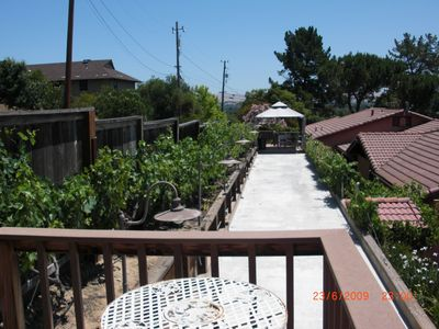 Photo for Perfect family home with pool, bocce court and views of Mt. Diablo