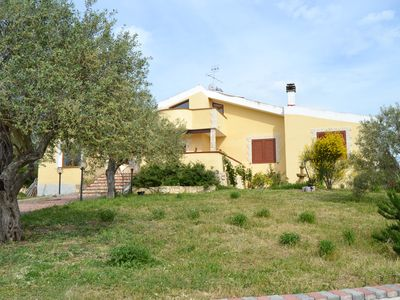 Photo for Recent villa, with swimming pool, surrounded by greenery among the olive trees