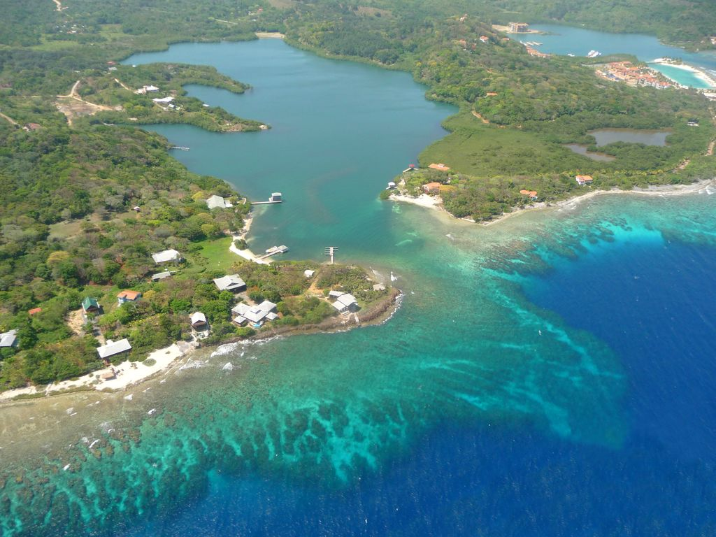 Oceanfront property best diving snorkeling on the south - Roatan dive sites ...