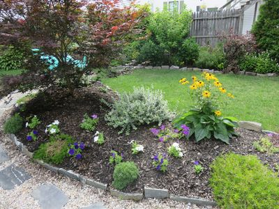 Garden beds full of flowers in the yard for your enjoyment.