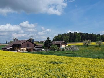 Jucker Farm, Seegraeben, Switzerland