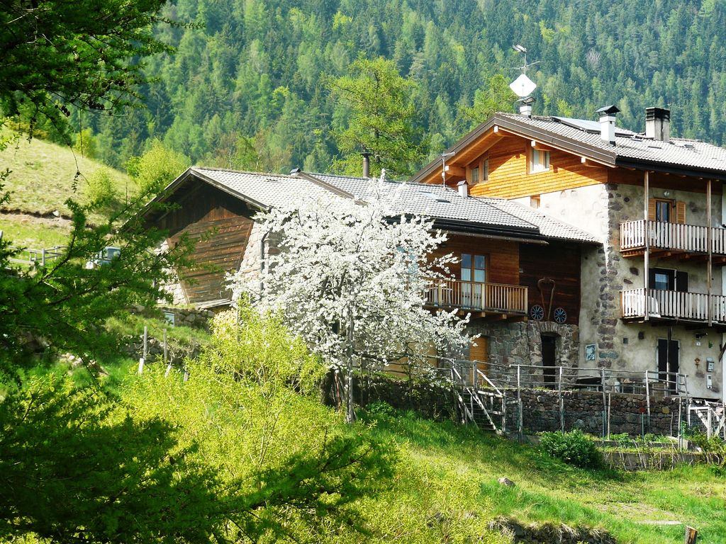 Cozy Cottage In The Mountains In Trentino Alto Adige