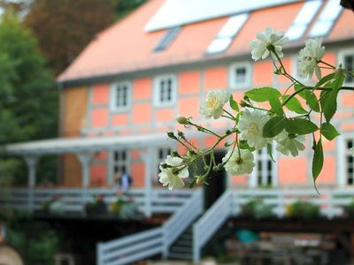 Photo for Holiday apartment in a historic water mill