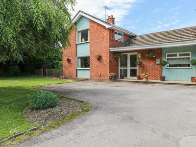 Photo for SAPELE, pet friendly, with a garden in Chichester, Ref 971565