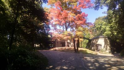Front of house: autumn view