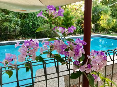 Photo for Spring Homestead; a tropical oasis.