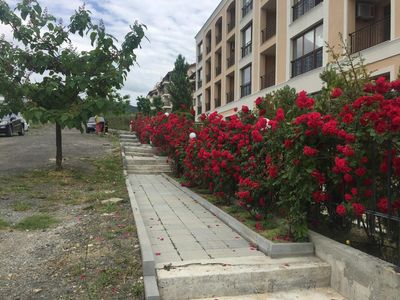 Photo for Holiday apartment Sveti Vlas for 1 - 4 persons with 1 bedroom - Holiday apartment