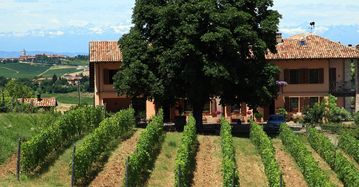 Tre Secoli Winery, Ricaldone, Italy