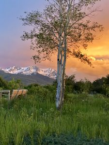 Photo for 🌸Starry Rock  Ranch...Best Mountain Views in the Entire Valley 360 views at 8700