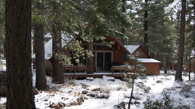 Photo for Mountain Retreat, Serene Cabin in Tahoe Donner - Forest View * Full amenities