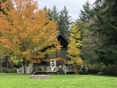 Charming Island Chalet, Big Kitchen, Relax, Quiet Forest Setting, Starry Nights