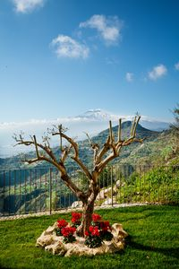 Photo for Taormina Rooms Panoramic Apartment 2