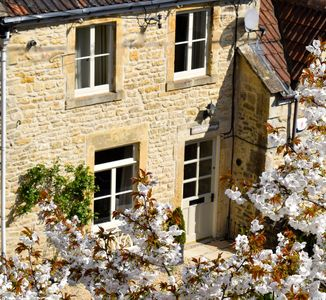 Cottage in spring blossom