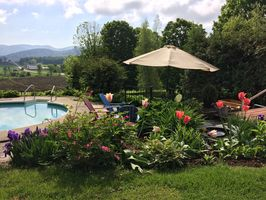 Photo for 1BR Apartment Vacation Rental in Monkton, Vermont