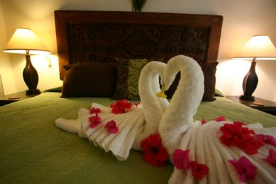 These love birds enjoy our condos. You will too!