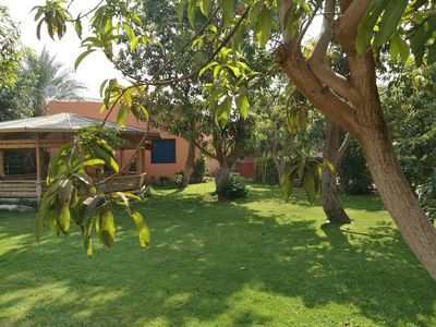 Photo for Equestrian guest house - Pyramids Egypt
