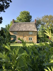 Photo for Pretty Thatched Cosy Cottage in Symondsbury Village, Dorset, 4 Star Gold Rating