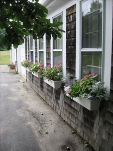 Slow Down & Go Back in Time-Relax Completely in Our Maine Home