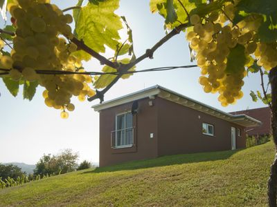 """Photo for """"the nussberg"""" holiday house in the vineyard"""