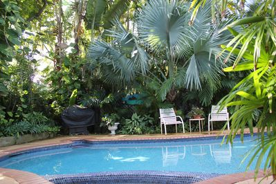 Relax in the pool and enjoy our Hawaiian gardens