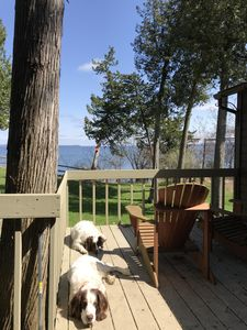 GREAT RATES! CHARMING DOG FRIENDLY LAKESIDE COTTAGE