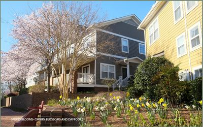 Photo for Extended Term Rental | Contemporary | Luxury | MARTA | Working Professional