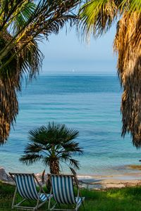 Enjoy the breaze  of the Ionian Sea in the palm garden of the house.