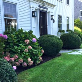 Stylish & Highly Appointed 4 BR Naushop Colonial~ Pool & Tennis