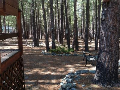 Quiet setting close to town in the middle of the forest