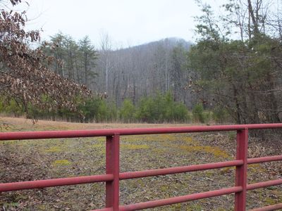 Located in Brush Creek Forest at the foot of Tener Mountain