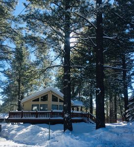 Photo for Charming 2Br 2Ba cabin with big windows in the tall pines.