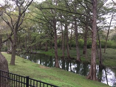 Photo for Cypress Creek Waterfront, Spring fed creek for swimming or fishing awaits you.