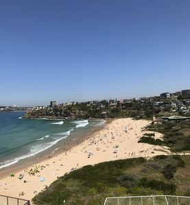 Photo for Extraordinary views from Freshwater Beachside Apartment 50 metres to Beach